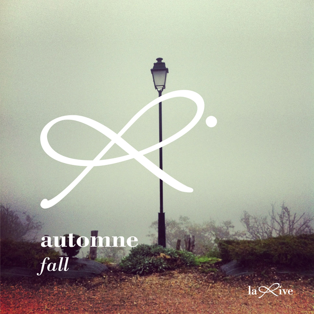 collection-automne